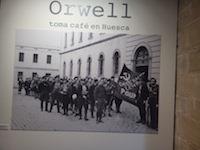 David Catalonia - Orwell cafe